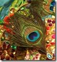 Krishna's peacock feather