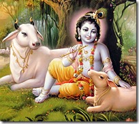 [Lord Krishna with cows]