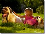 [child with dog]