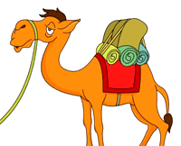 [camel]
