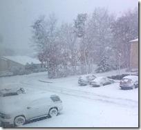 [snowstorm]