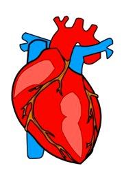 [heart]