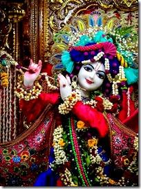 [Shri_Krishna]