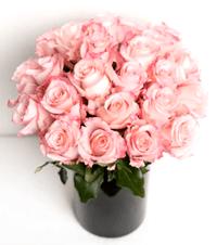 [roses bouquet]