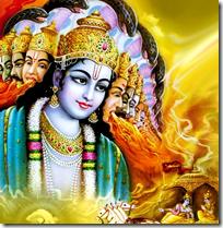 [Krishna universal form]