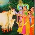 Worshiping cows