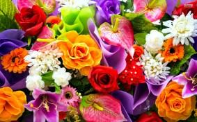 colorful-bouquet-18686-1920x1200