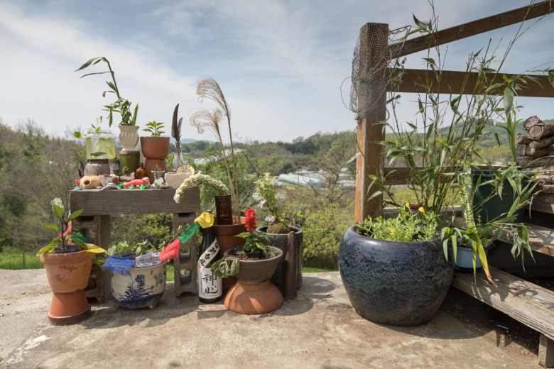 Houseplant altar made at Rural Caprine Farm in Okayama, Japan