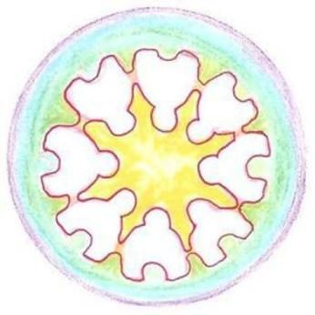 Logo de Krisolets Contacontes