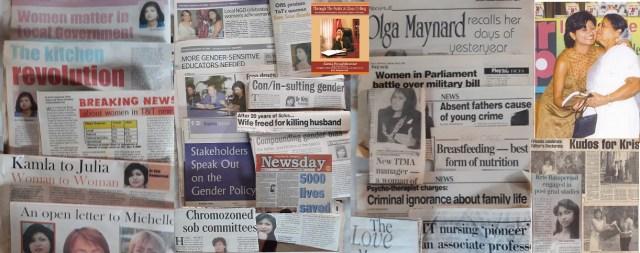 Cross section of Kris Rampersad public awareness on gender sensitive development