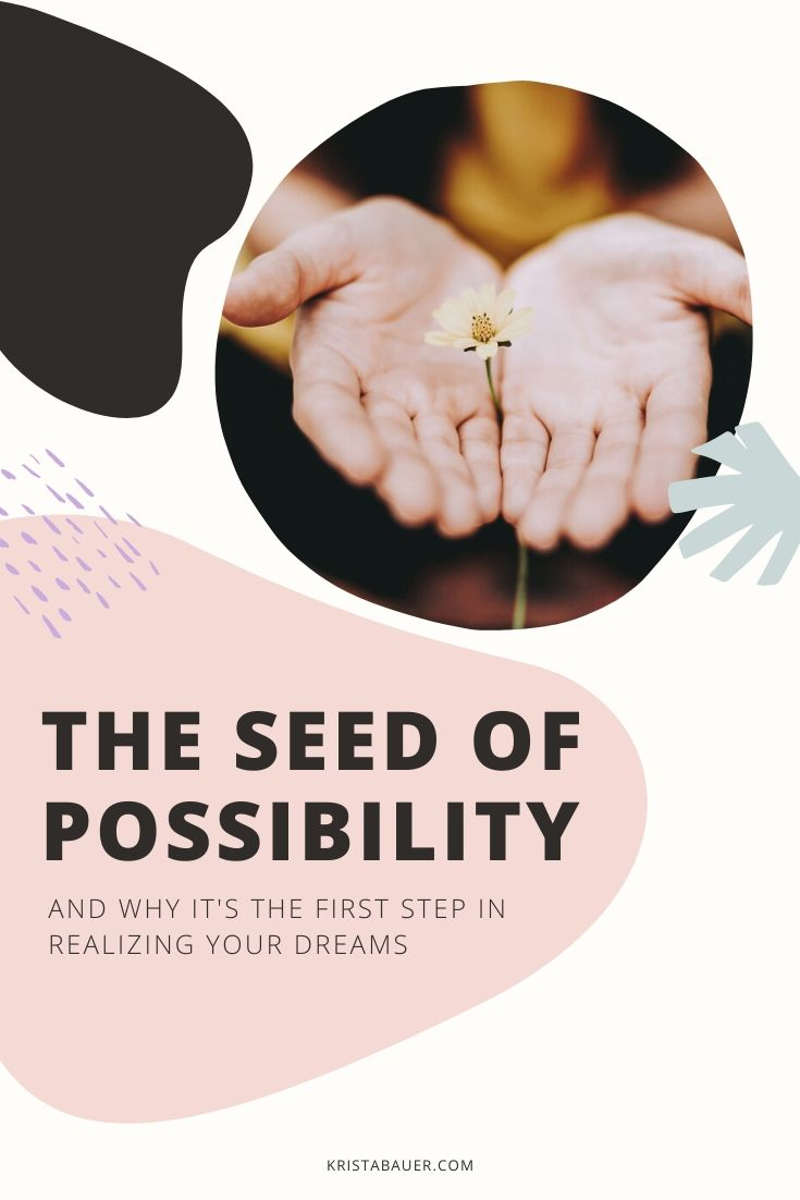 the-seed-of-possibility