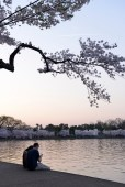 A couple enjoys sunset on the Tidal Basin with the Martin Luther King Jr Memorial in the background.