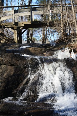 Jewell Falls, Fore River Sanctuary