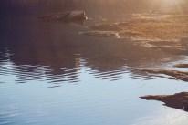 Lake Powel: Sunset Reflections