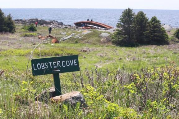 Monhegan Island: Top of trail into Lobster Cove