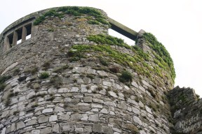 Carlow Castle Tower-River Barrow, Ireland