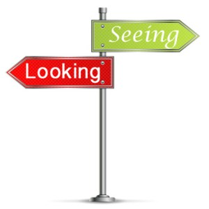 looking-seeing-sign