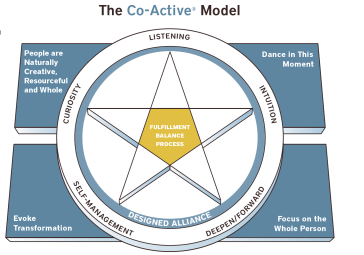 co-active-model