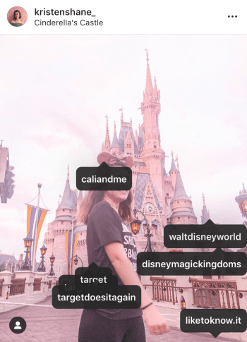 Grow Your Instagram in 2019 Kristen Shane - disney castle 2
