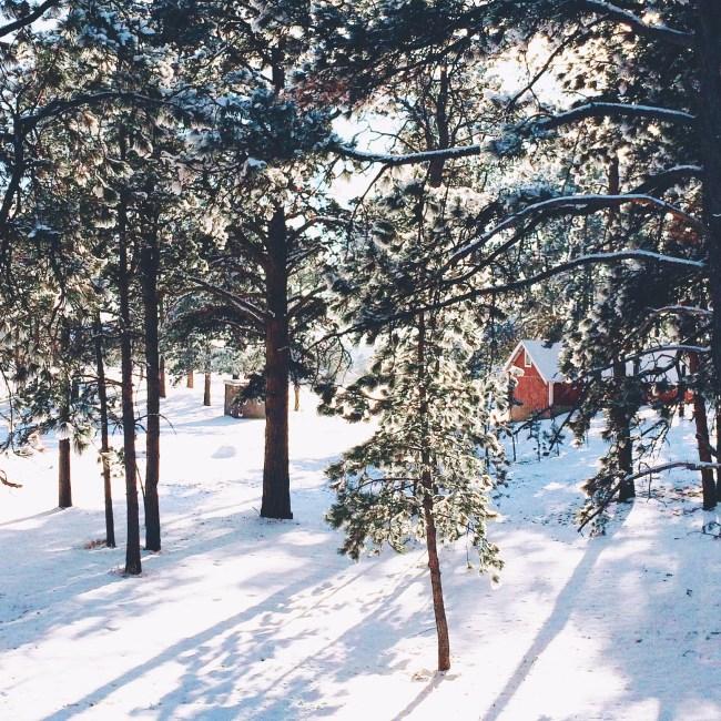 Dreamy_Winter_Cabin