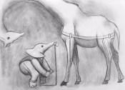 Elephant Tailor and Giraffe