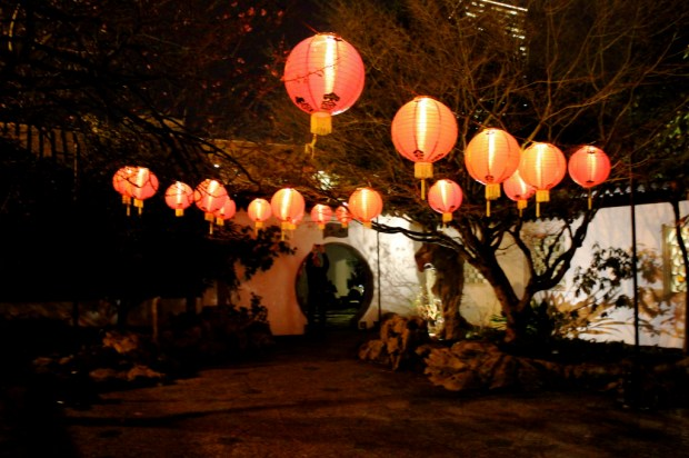 lantern night 6