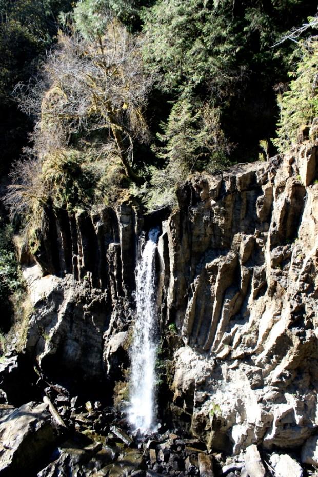 Drift Creek Falls 3