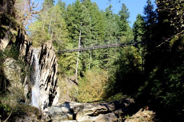 Drift Creek Falls 6