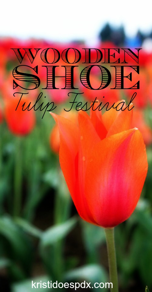 Wooden Shoe Tulip Festival in Woodburn Oregon