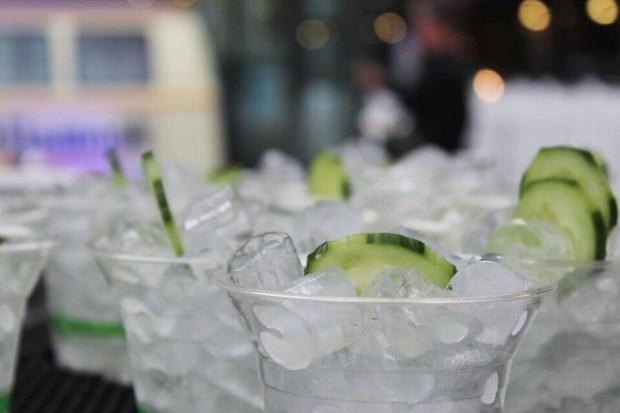 Sandwich invitational gin