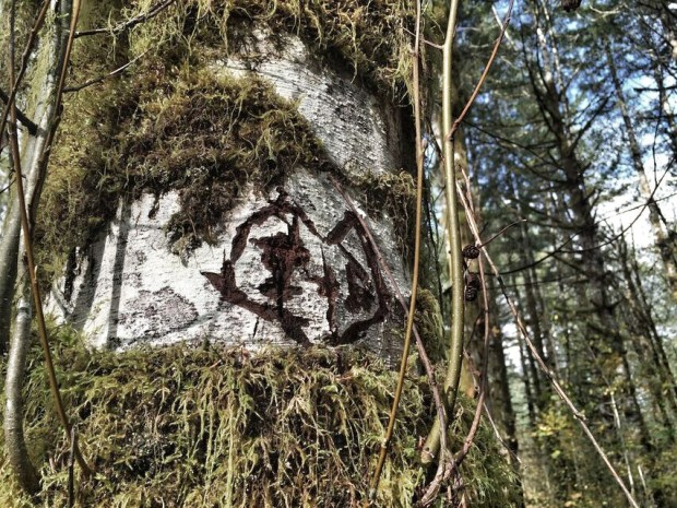 Wilson River Trail carving