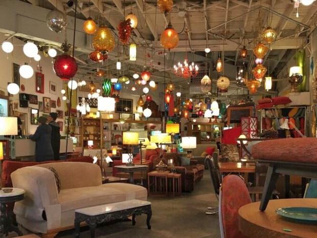 Lounge lizard original store