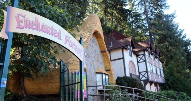 enchanted-forest-entrance