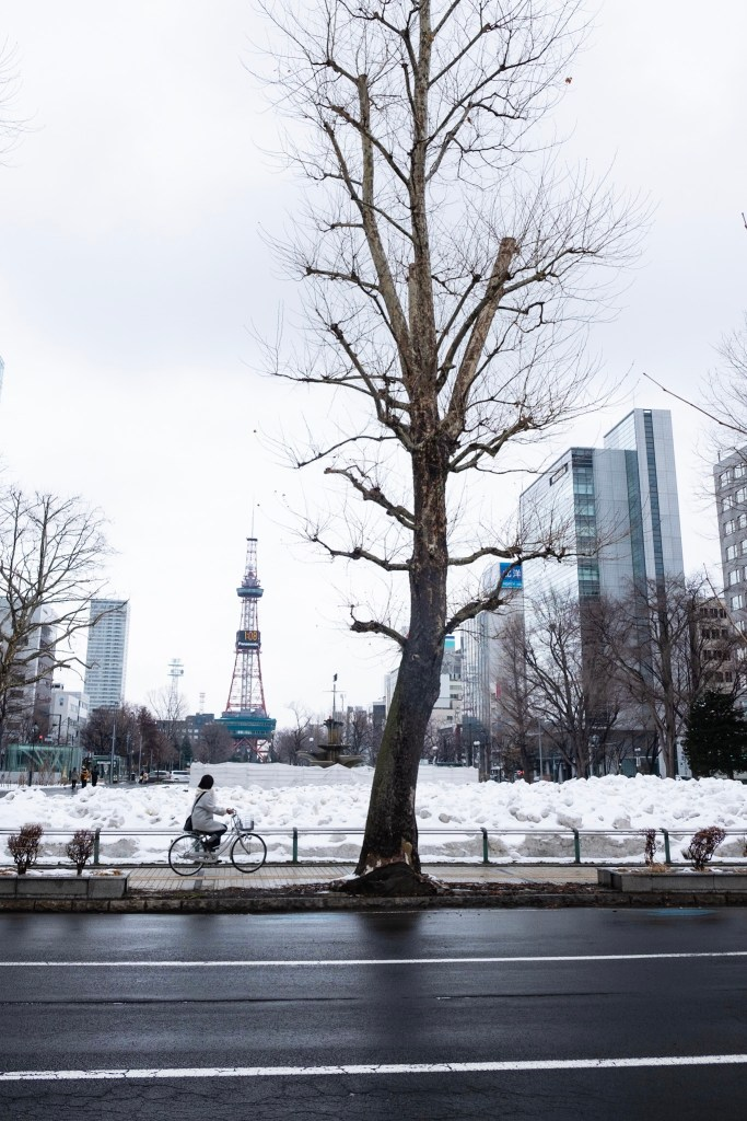 Biking through snow in Sapporo - Sapporo TV Tower in the background