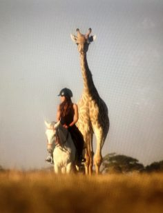 Wildlife and travel Tv Show host on horseback safari
