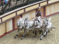Hästkapplöpning på Colosseum.