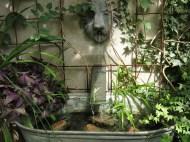 2 aug 14 Helbo vatten fontän