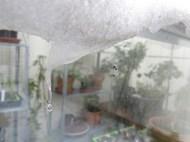 Smältande snö