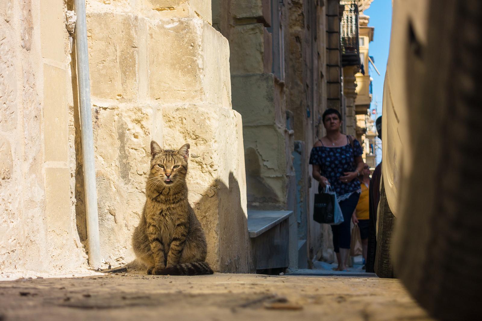 Malta Itinerary. Valletta