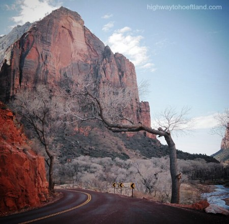 A road in Zion National Park -