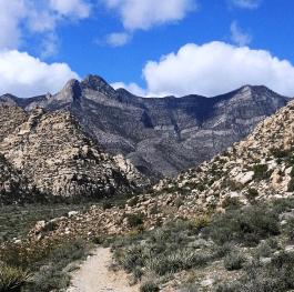 Beautiful Red Rock Canyon