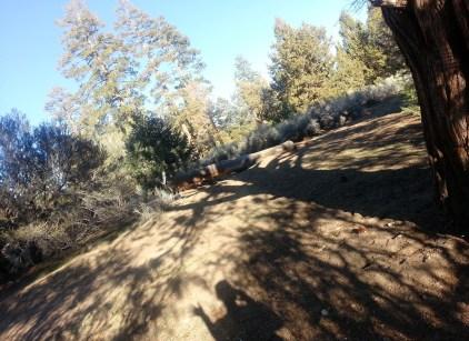 Spot #40, Snowberry Loop, Serrano Campground.