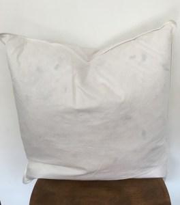 pillow insert (22x22)