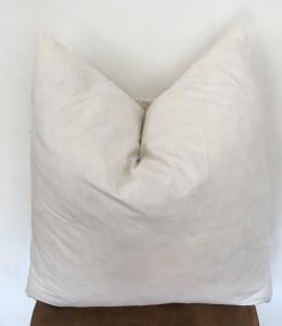 pillow insert (20x20)