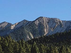 Mountain wisdom