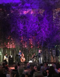 Cathlene Pineda Quartet at the Hammer Museum Jazz Pop Series, Los Angeles
