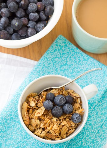 granola in small bowl topped with blueberrie