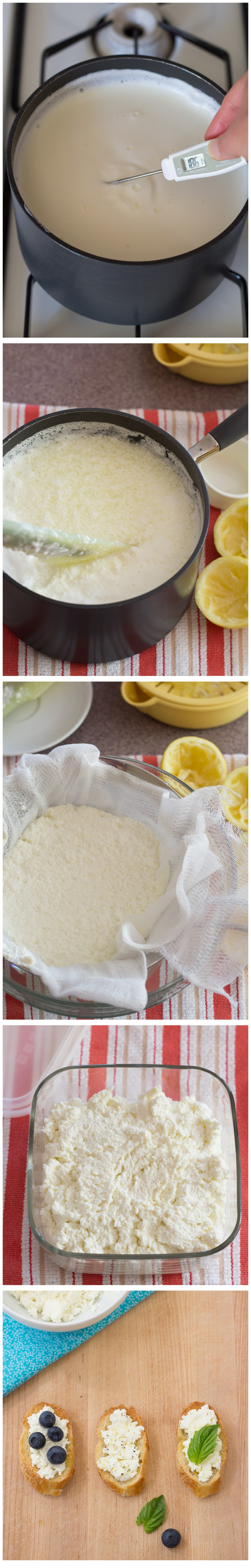 step by step shots of making cheese, checking temperature, curds, straining, finished cheese