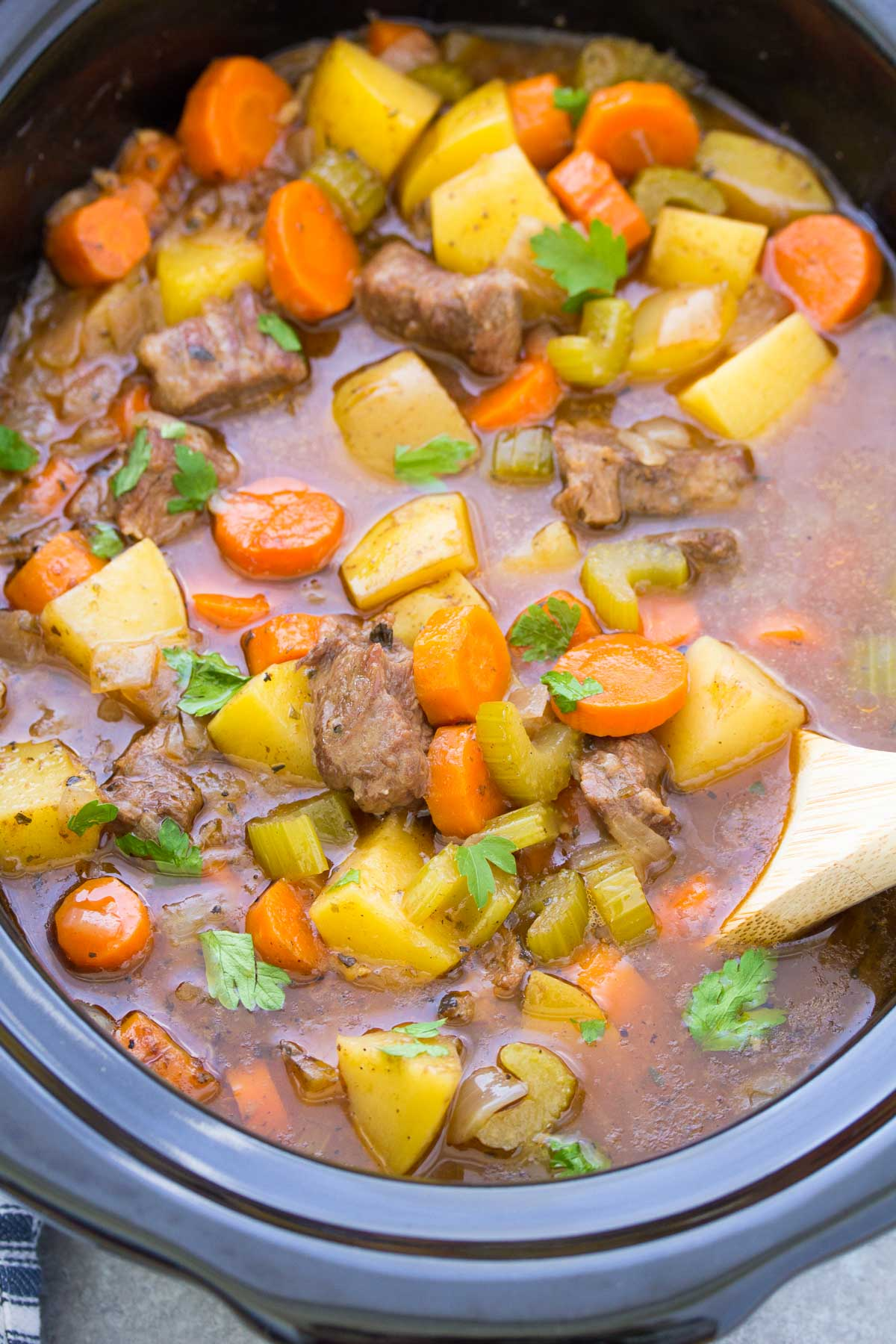 beef stew with potatoes and carrots in a slow cooker