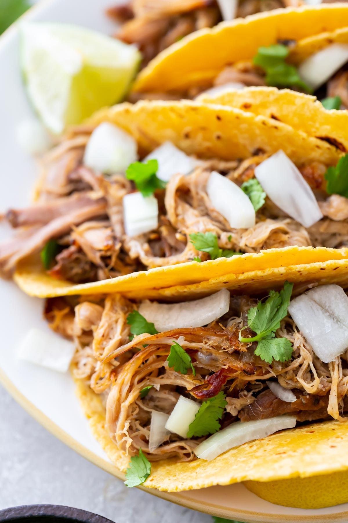 close up of pork carnitas tacos with onion and cilantro